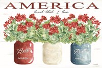 America Glass Jars Fine Art Print