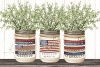 Patriotic Glass Jar Trio I Fine Art Print