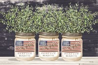 Patriotic Glass Jar Trio II Framed Print