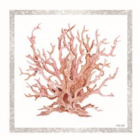 Pink Coastal Coral I Fine Art Print