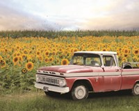 Truck with Sunflowers Framed Print