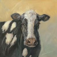 Pretty Cow Fine Art Print