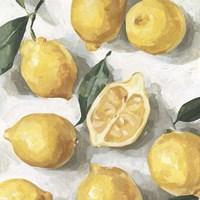 Fresh Lemons I Framed Print