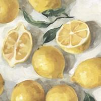 Fresh Lemons II Framed Print