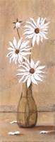 White Daisies Fine Art Print