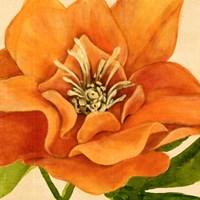 Copper Petals II Fine Art Print