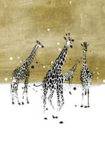 Spotted Giraffe II Framed Print