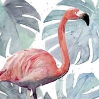 Flamingo Splash I Fine Art Print