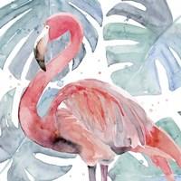 Flamingo Splash II Fine Art Print