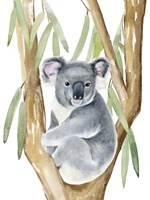 Woodland Koala I Fine Art Print