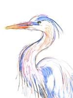 Heron's Glance II Framed Print