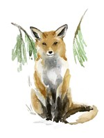 Snowy Fox I Fine Art Print