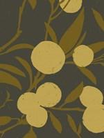 Golden Satsuma II Framed Print
