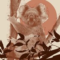 Pop Art Koala II Fine Art Print