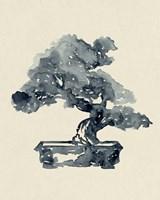 Indigo Bonsai II Framed Print