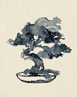 Indigo Bonsai IV Framed Print