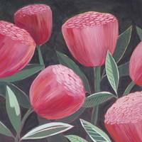 Blush Blossoms I Framed Print