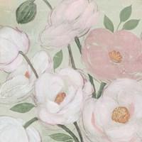 Flora Sketch I Framed Print