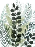 Forest Forage I Framed Print