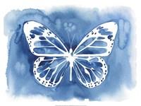 Butterfly Inkling II Framed Print