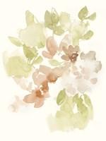 The Softest Petals I Framed Print