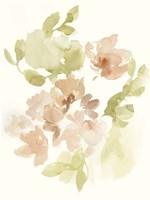 The Softest Petals II Framed Print