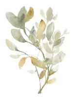 Sage & Sienna Leaves I Framed Print