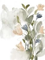 Flower Cluster II Framed Print