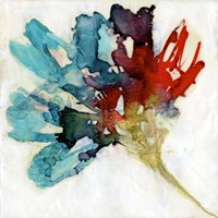 Splashed Flower II Framed Print