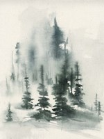 Misty Winter I Framed Print