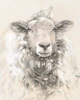 Sketched Farm Portraits I Framed Print