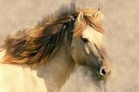 Blended Horse I Fine Art Print