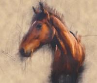Blended Horse III Fine Art Print