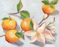 Tangerine Blossoms I Framed Print