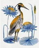Heron Pond II Framed Print