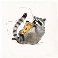 Rascally Raccoon II Fine Art Print