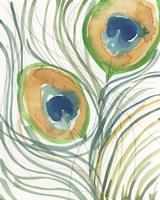 Peacock Abstract I Framed Print