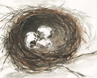 Nesting Eggs III Fine Art Print