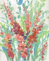 Tropical Summer Blooms II Framed Print