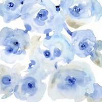 Blue Roses II Framed Print