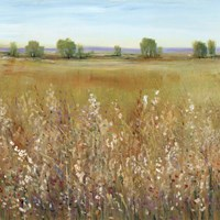 Abundance of Wildflowers I Fine Art Print