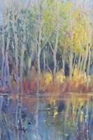 Reflected Trees II Fine Art Print