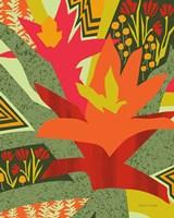 Bromeliad Fine Art Print