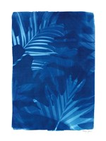 Cyanotype Tropical IV Framed Print