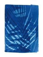 Cyanotype Tropical I Framed Print