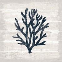 Driftwood Coast VII Blue Framed Print