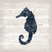 Driftwood Coast VI Blue Framed Print