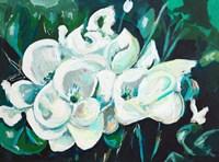 Green into White Orchids Fine Art Print