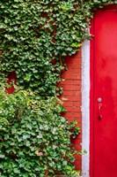 Red Garden Door Fine Art Print