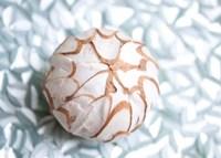 Shimmer Shells I Framed Print